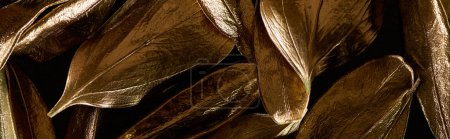 Photo pour Panoramic shot of gold metal decorative leaves isolated on black - image libre de droit