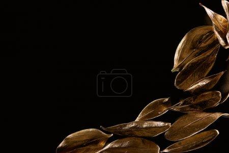 Foto de Vista superior de hojas decorativas de oro aisladas en negro con espacio de copia - Imagen libre de derechos