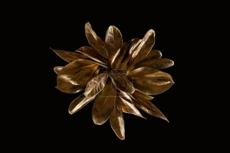 Photo for Top view of golden shiny metal flower isolated on black - Royalty Free Image