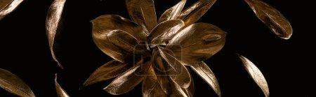 Foto de Foto panorámica de la flor decorativa de metal dorado y hojas aisladas en negro - Imagen libre de derechos