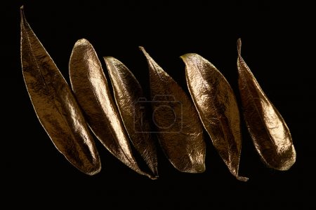 Photo for Top view of golden metal decorative leaves in row isolated on black - Royalty Free Image