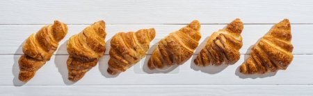 Photo for Panoramic shot of golden fresh and tasty croissants on white - Royalty Free Image