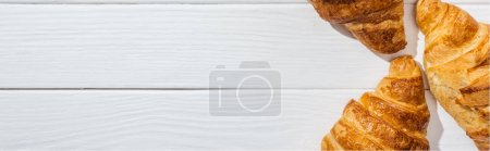 Photo for Panoramic shot of tasty and fresh croissants on white surface - Royalty Free Image