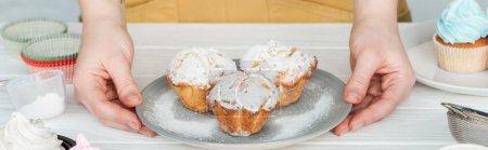 Photo pour Plan panoramique de femme tenant la plaque avec de délicieux cupcakes avec du sucre en poudre - image libre de droit