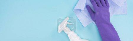 Foto de Foto panorámica de limpiador en guante de goma púrpura sosteniendo trapo cerca de la botella de aerosol con detergente en el fondo azul - Imagen libre de derechos