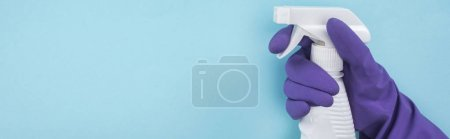 Photo for Panoramic shot of woman in purple rubber glove holding white spray bottle with detergent on blue background - Royalty Free Image