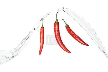 Photo pour Piments rouges épicés brillants avec éclaboussures d'eau claire isolés sur blanc - image libre de droit