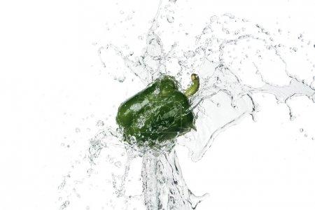 Photo pour Poivron vert frais avec éclaboussure d'eau claire isolé sur blanc - image libre de droit