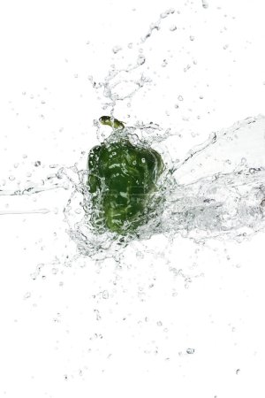 green bell pepper with clear water splash isolated on white