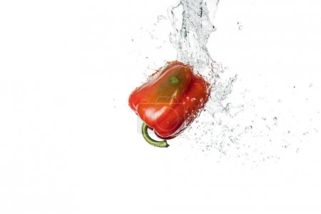 Photo for Tasty fresh red bell pepper with water splash and drops isolated on white - Royalty Free Image