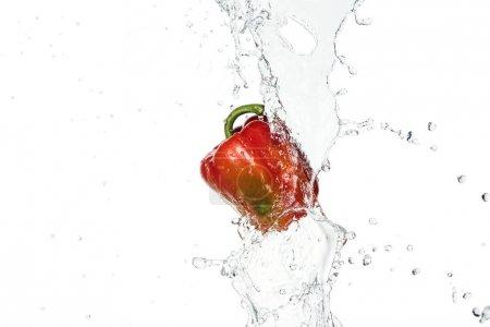 Photo for Tasty fresh red bell pepper with clear water splash and drops isolated on white - Royalty Free Image