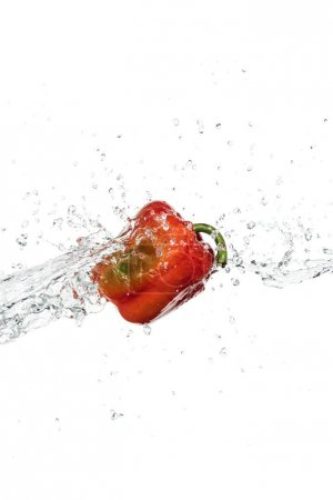 Photo for Whole tasty fresh red bell pepper with clear water splash and drops isolated on white - Royalty Free Image