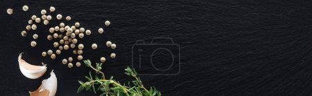 Photo for Panoramic shot of white pepper on black background near garlic cloves and thyme - Royalty Free Image