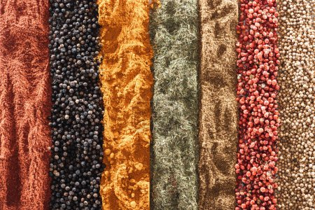 Photo for Top view of traditional bright indian spices in rows - Royalty Free Image