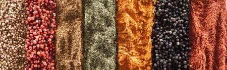 top view of traditional bright indian spices in rows, panoramic shot