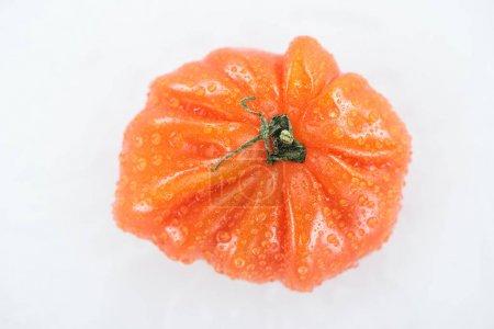 Photo pour Vue supérieure de la tomate rouge entière avec des gouttes d'eau d'isolement sur le blanc - image libre de droit
