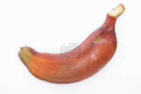 Photo for Close up view of ripe exotic tasty red banana isolated on white - Royalty Free Image