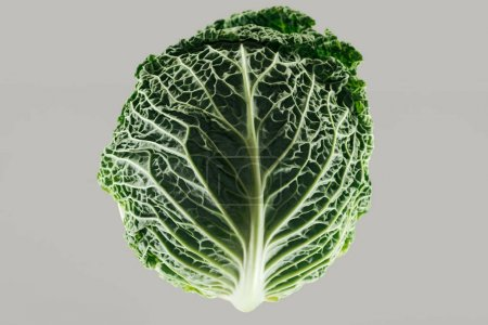 Photo for Top view of green fresh organic whole cabbage isolated on grey - Royalty Free Image