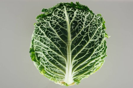 Photo for Top view of green organic whole cabbage isolated on grey - Royalty Free Image
