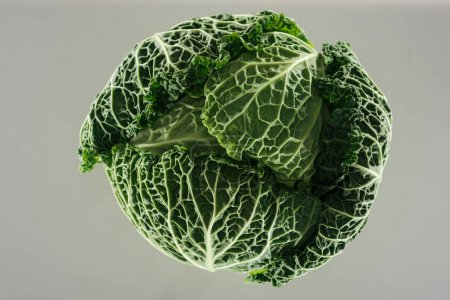Photo for Top view of green fresh organic whole cabbage with leaves isolated on grey - Royalty Free Image