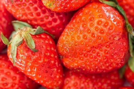 Photo pour Vue rapprochée de fraises rouges mûres entières fraîches en tas - image libre de droit