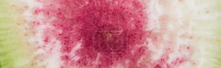 Photo for Panoramic shot of raw fresh watermelon radish purple slice - Royalty Free Image