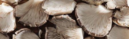Photo pour Fermer la vue vers le haut des champignons texturés dans la pile, projectile panoramique - image libre de droit