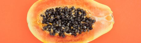 Photo for Panoramic shot of ripe papaya half with black seeds isolated on orange - Royalty Free Image