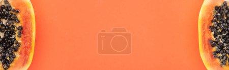 Photo pour Coup panoramique des moitiés exotiques mûres de papaye avec les graines noires d'isolement sur l'orange avec l'espace de copie - image libre de droit