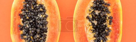 Photo for Panoramic shot of papaya halves with black seeds isolated on orange - Royalty Free Image