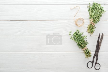 Photo for Top view of green thyme near vintage scissors on white wooden table - Royalty Free Image