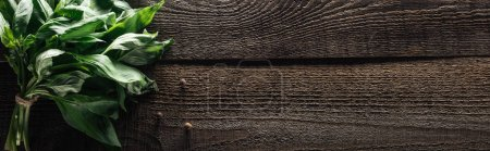 Photo for Panoramic shot of green basil and black pepper on wooden rustic table - Royalty Free Image