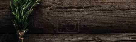 Photo for Top view of green rosemary on wooden weathered table with copy space, panoramic shot - Royalty Free Image