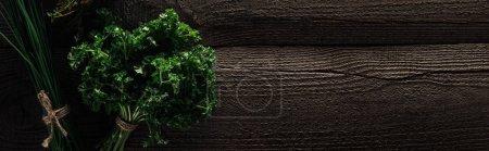 Photo pour Vue supérieure de l'oignon vert et du persil sur la table altérée en bois avec l'espace de copie, projectile panoramique - image libre de droit