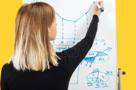 Photo for Back view of businesswoman drawing graphics and diagrams on white office board - Royalty Free Image
