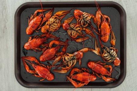 Photo pour Vue supérieure des homards rouges dans le plateau sur la table en bois - image libre de droit