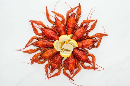 Photo for Top view of red lobsters and lemon slices on white background - Royalty Free Image