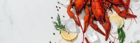 Photo pour Coup panoramique de homards rouges, poivrons, tranches de citron et herbes vertes avec des glaçons sur fond blanc - image libre de droit