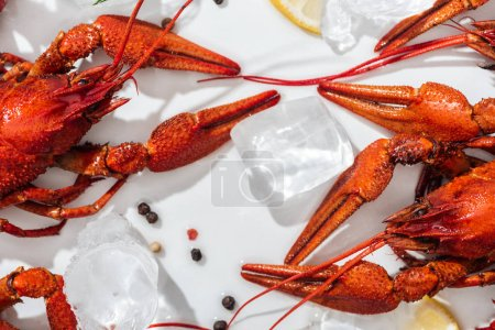 Photo pour Vue supérieure des homards rouges, des tranches de poivre et de citron sur le fond blanc - image libre de droit