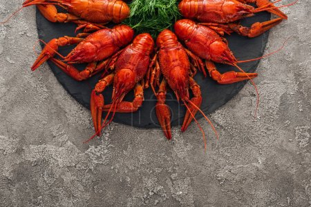 Photo for Top view of black plate with red lobsters and green herbs on grey textured surface - Royalty Free Image