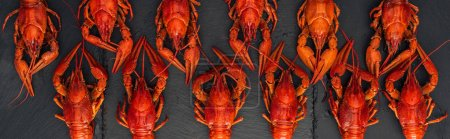 Photo for Panoramic shot of red lobsters on black textured surface - Royalty Free Image