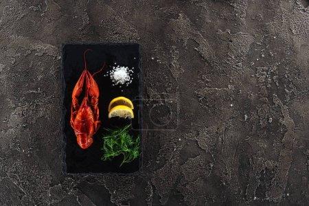 Photo pour Vue du dessus de la plaque noire avec les homards rouges, le sel blanc, les tranches de citron et les herbes vertes sur la surface texturée grise - image libre de droit