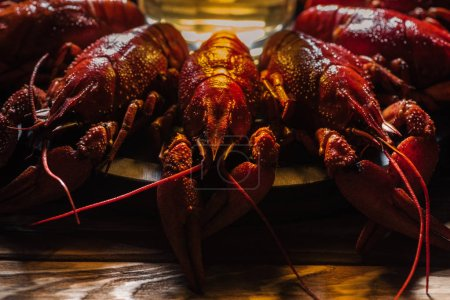 Photo for Selective focus of plate with red lobsters and glass of beer on wooden surface - Royalty Free Image