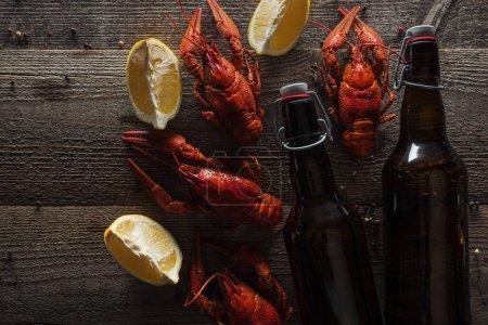 Photo pour Vue du haut des homards rouges, des tranches de citron et des bouteilles avec la bière sur la surface en bois - image libre de droit