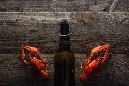 Photo pour Vue supérieure des homards rouges et de la bouteille avec la bière sur la surface en bois - image libre de droit