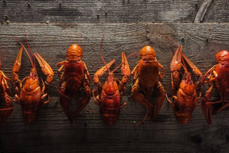 Photo for Top view of red lobsters on wooden surface - Royalty Free Image