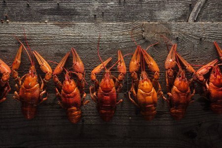 Foto de Top view of red lobsters on wooden surface - Imagen libre de derechos