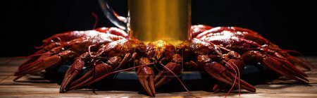 Photo for Beer glass on plate with red lobsters at wooden surface - Royalty Free Image