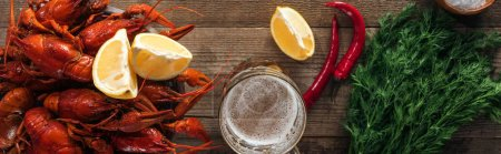 Photo for Panoramic shot of red lobsters, dill, pepper, lemon slices and glass with beer on wooden surface - Royalty Free Image