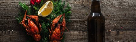 Photo for Panoramic shot of red lobsters, lemon slices, dill and glass bottle with beer on wooden surface - Royalty Free Image